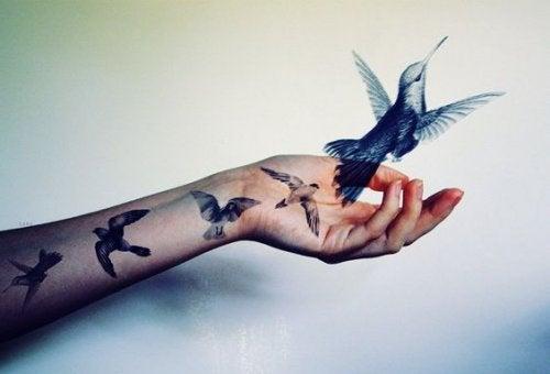 main-avec-colibri