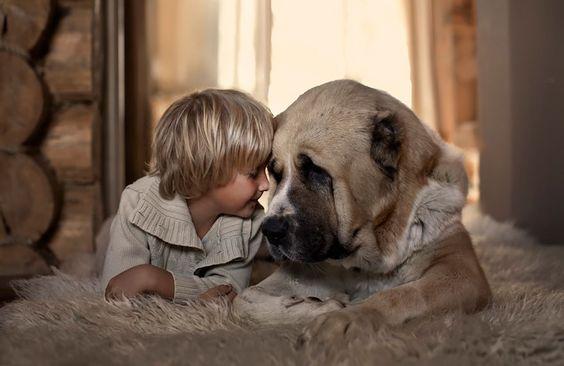 amour-animal-enfant-chien
