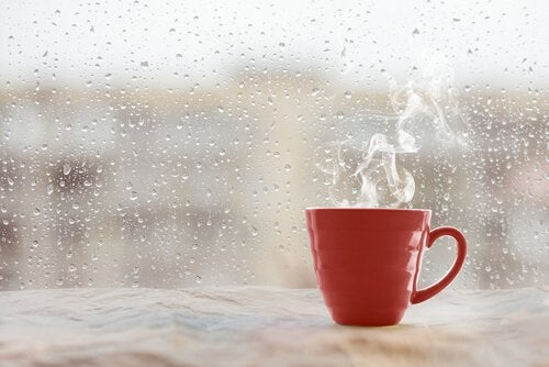 taza-de-cafe-en-la-ventana