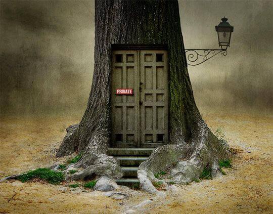 puerta-privada