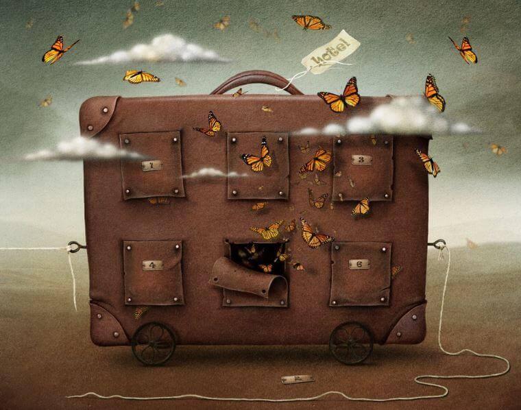 maleta-con-mariposas