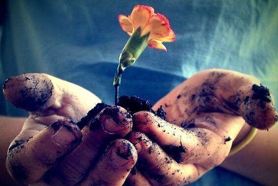 manos-con-flores