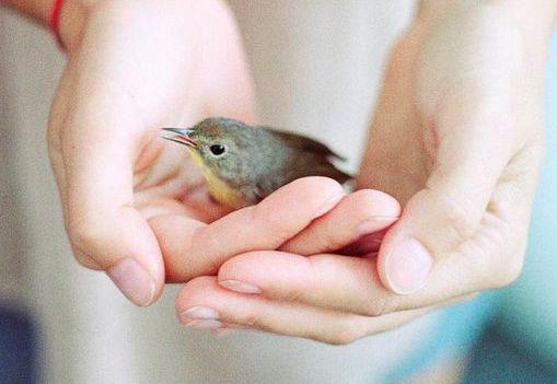 Offrir de l'amour aux inconnu-e-s aide à surmonter la dépression