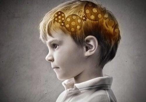 nino-cerebro-768x539