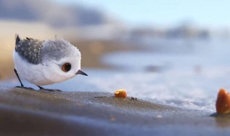 piper-court-metrage-pixar-768x454