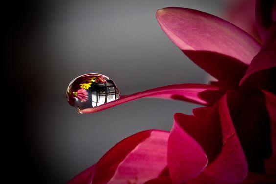 Les larmes émotionnelles : remède pour «drainer» l'âme
