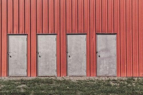 puertas-768x512