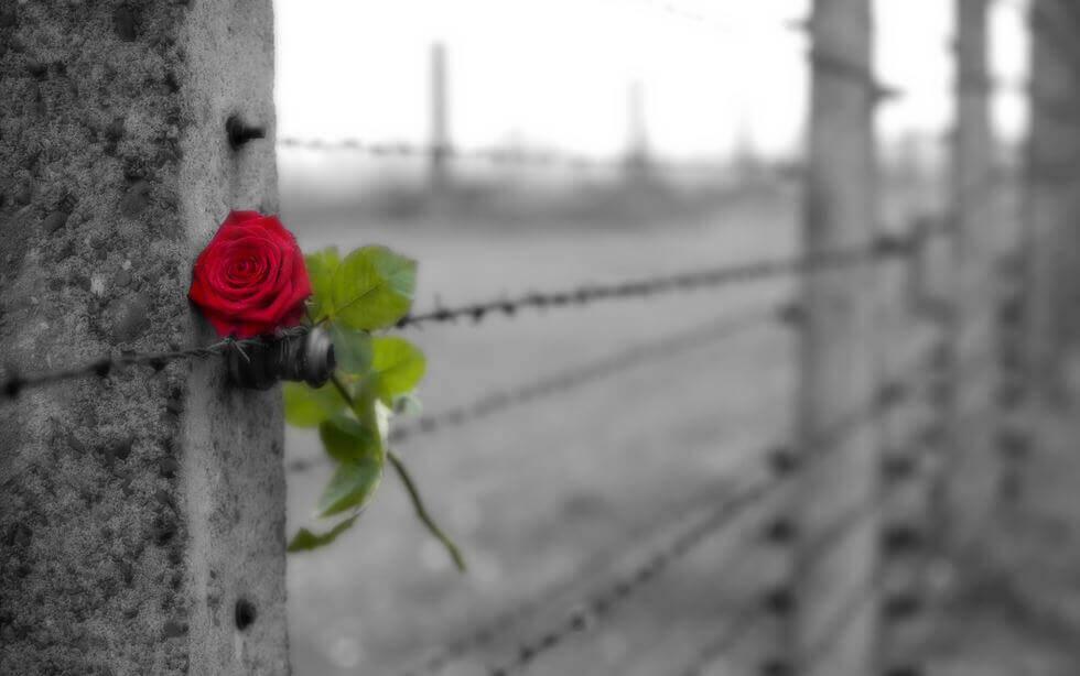 Le deuil est un adieu plein d'amour