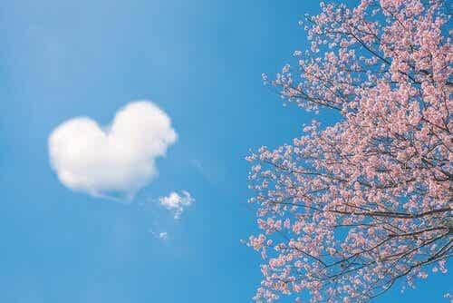 5 proverbes chinois sur l'amour
