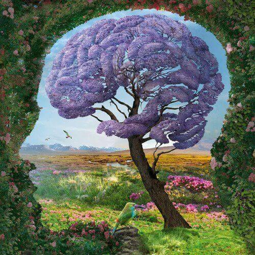 Qu'est-ce que le système limbique et comment fonctionne-t-il?