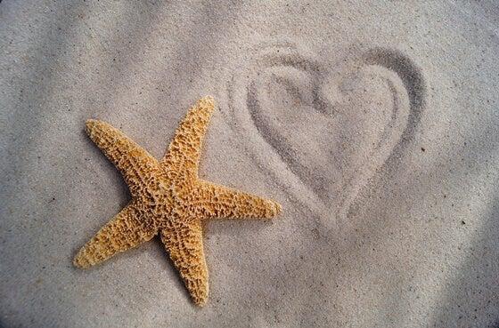 légende de l'enfant et de l'étoile de mer