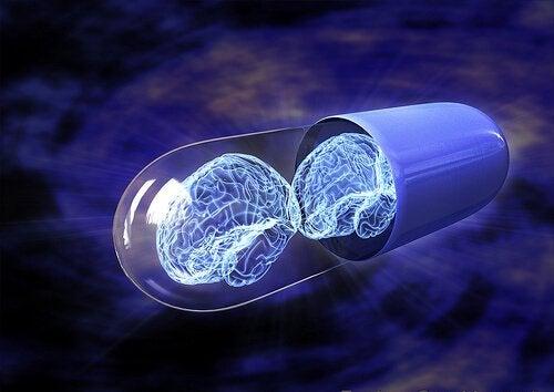 Que sont les nootropiques et comment renforcent-ils votre intelligence ?