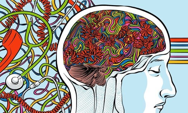 le nerf vague et le cerveau