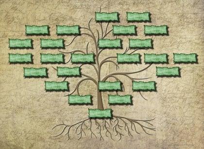 contenu arbre généalogique