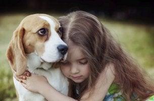 empathie chez les chiens