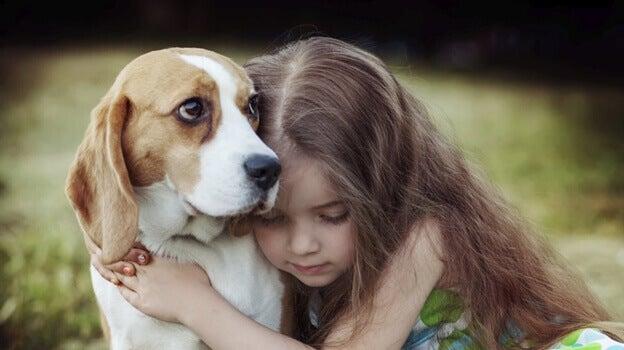 L'empathie chez les chiens: un pouvoir guérisseur
