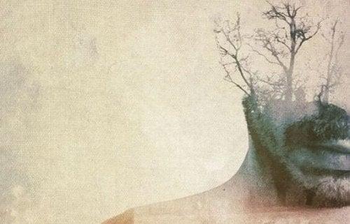 visage d'homme avec des arbres