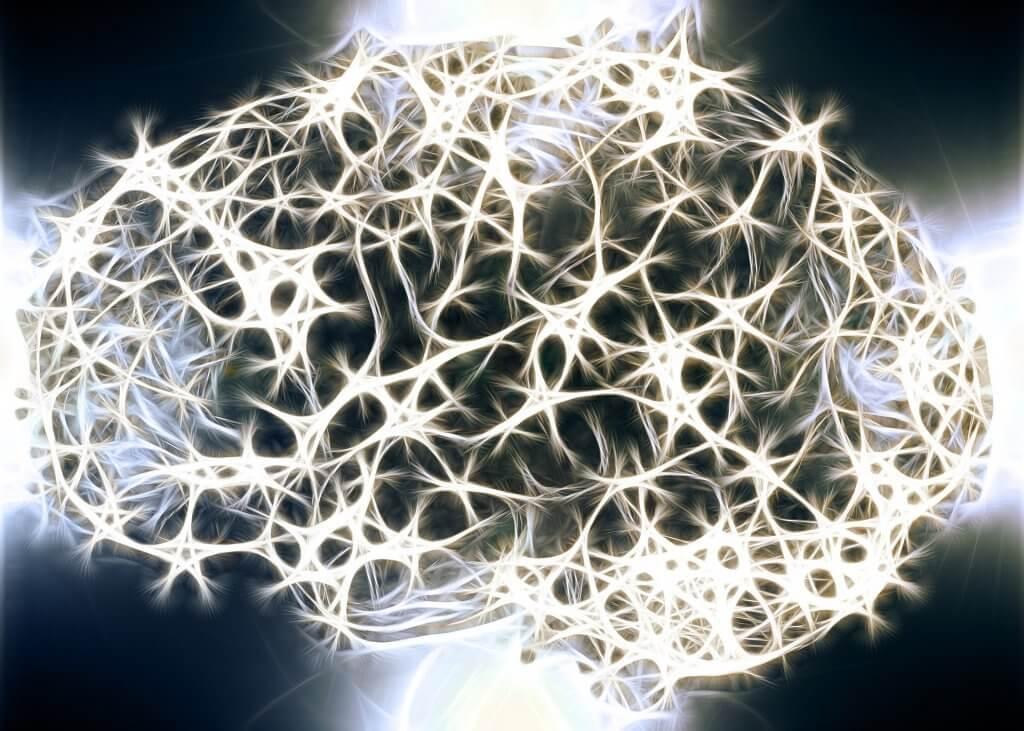 Savez-vous pourquoi la substance blanche de notre système nerveux est si importante ?