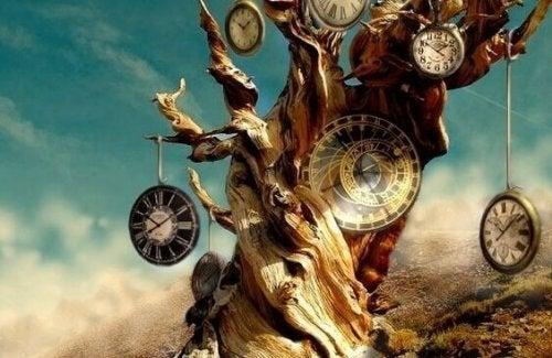 tronc rempli de montres