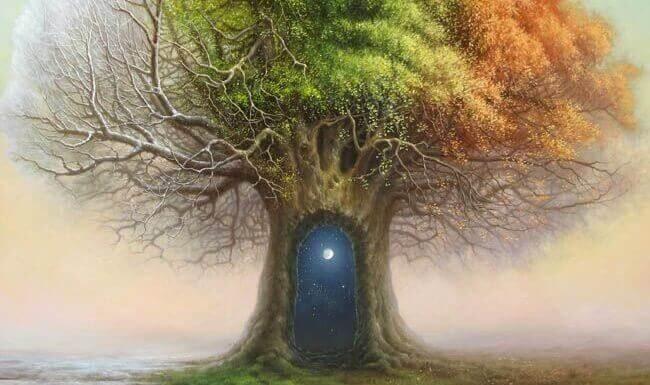 nuit dans le tronc d'un arbre