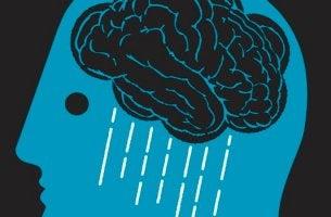 cerveau avec pluie