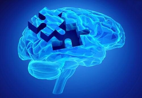 mémoire de travail dans le cerveau