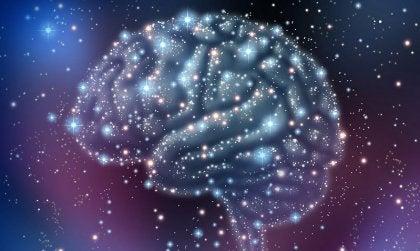 cerveau étoilé