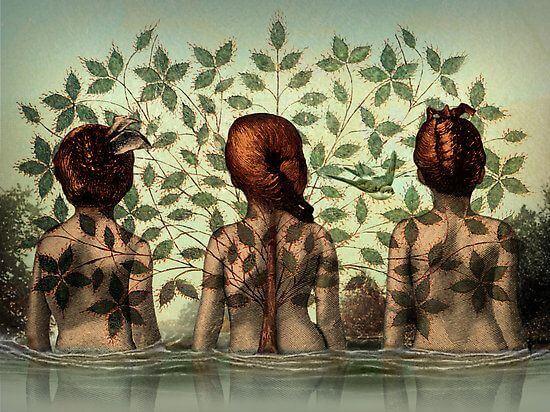 trois femmes et un arbre