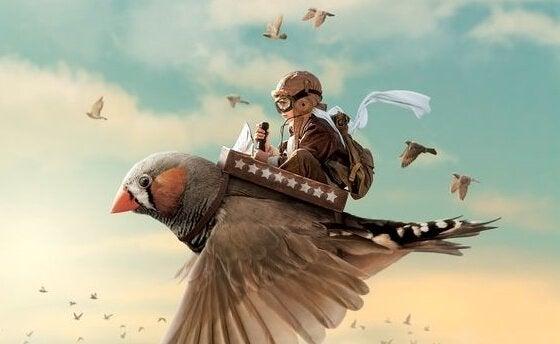 enfant sur un oiseau