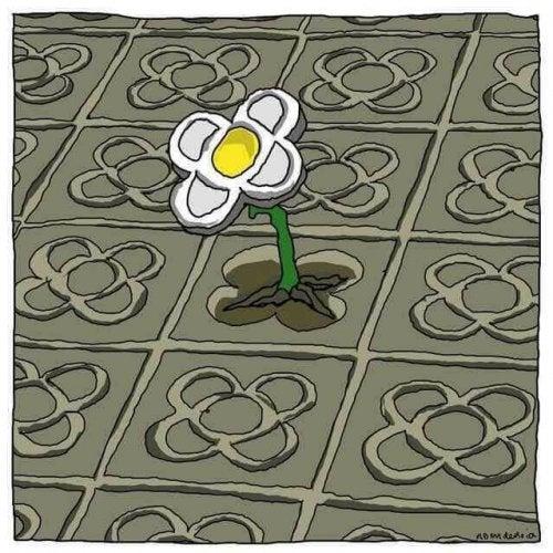 fleur dans le sol