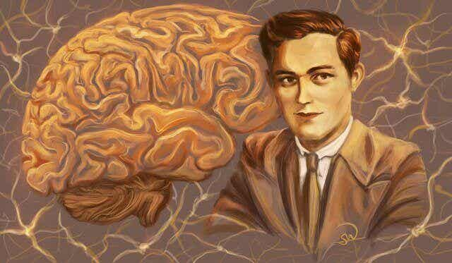 Trois cas cliniques qui ont changé ce que l'on pensait du cerveau