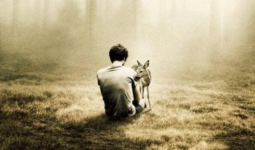 solitude d'un homme dans un bois