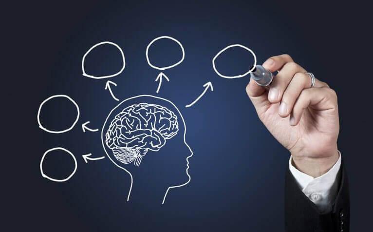 Pourquoi étudier la psychologie ?