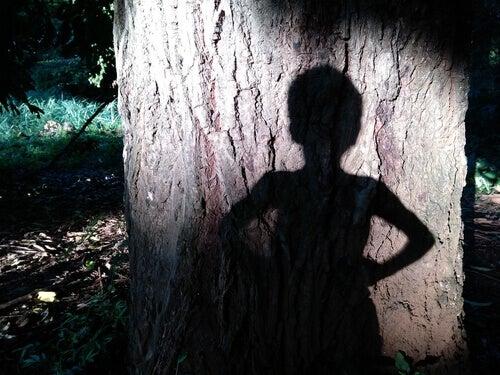 ombre d'un enfant sur un arbre