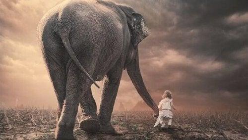 éléphant représentant le temps pour un enfant