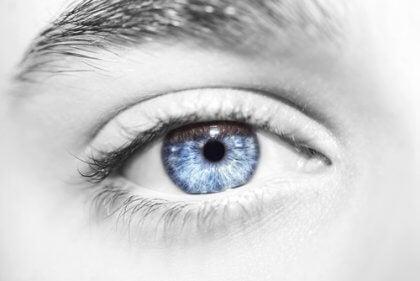 île des yeux bleus
