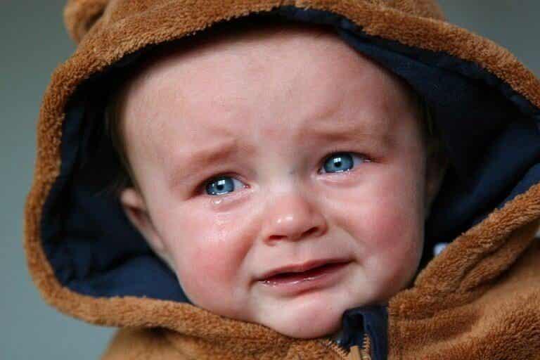Le petit Albert, l'enfant perdu de la psychologie
