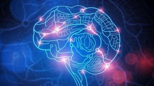 aire du cerveau affectée par l'humiliation