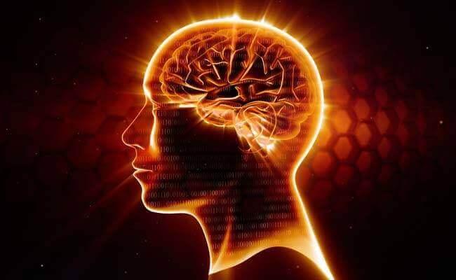 Oméga-3, le meilleur neuroprotecteur