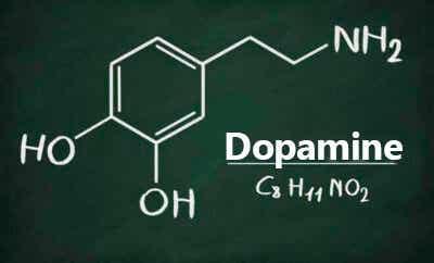 Qu'est-ce que la dopamine et quelles sont ses fonctions ?