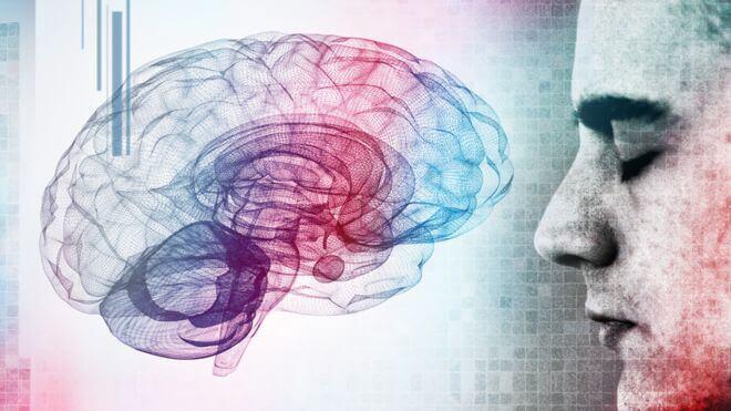 homme face à un cerveau