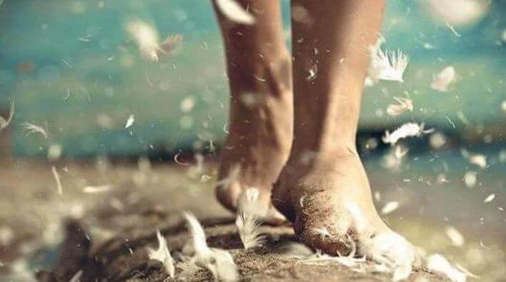 pieds et plumes