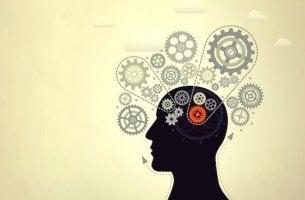 accroître l'intelligence