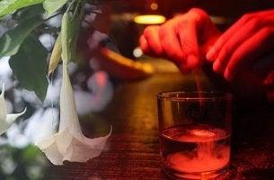 personne qui verse de la scopolamine dans un verre