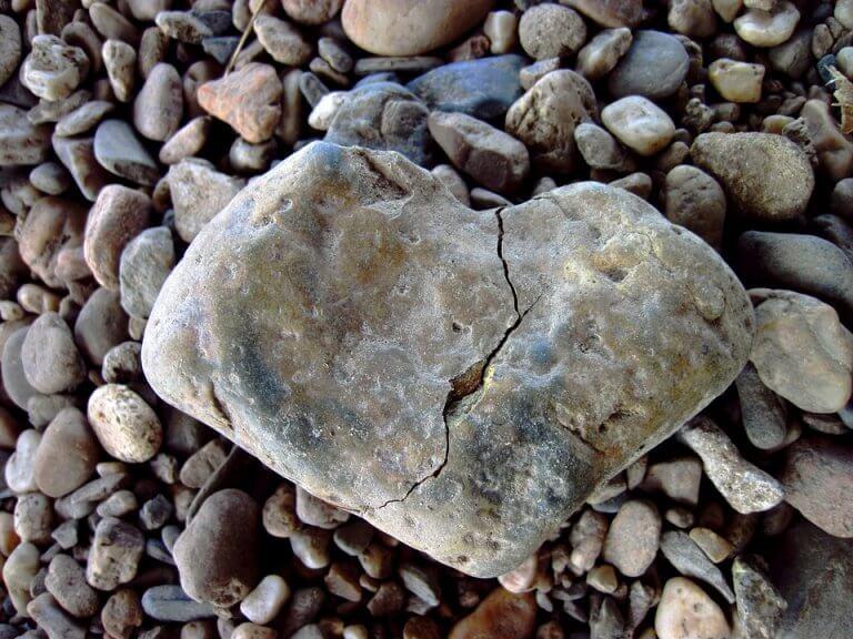 relation d'amour et de haine entre psychologie et sociologie