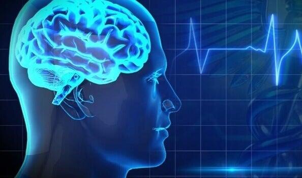 Les 5 plus grands ennemis de la santé cérébrale