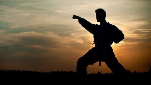 homme qui pratique les arts martiaux