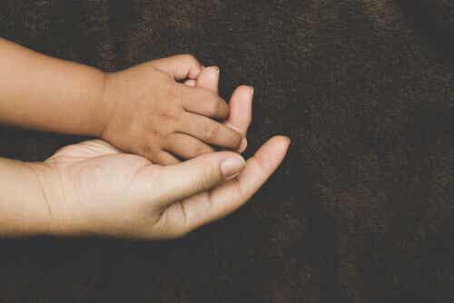 Comment l'attachement se développe-t-il chez les enfants adoptés ?