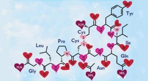 hormone ocytocine