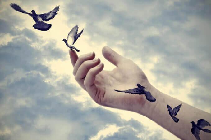 main et oiseaux